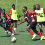 Crested Cranes Intensify Training